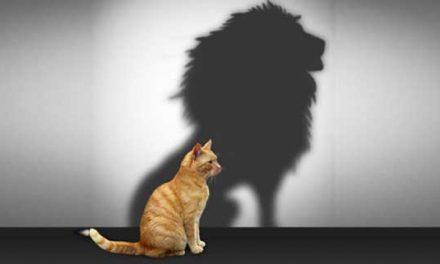 Aumenta tu Autoestima con Estos Cinco Ejercicios